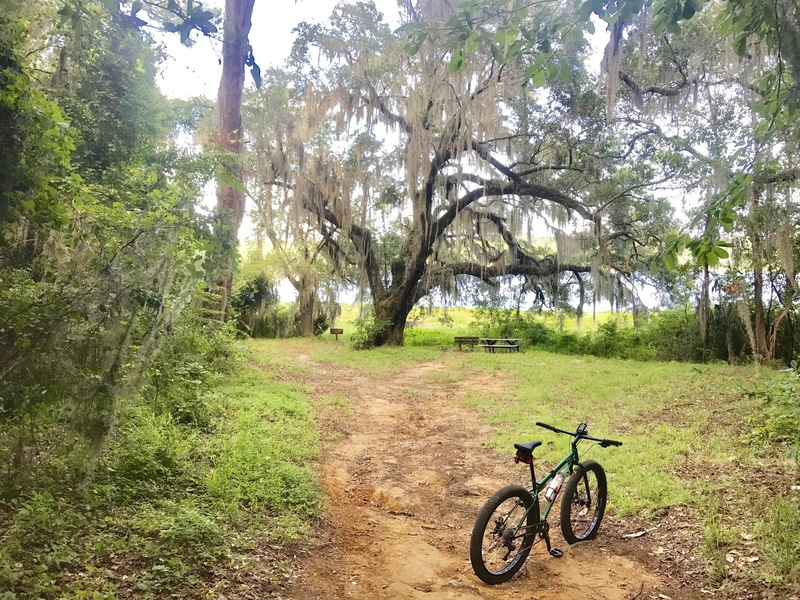 Idyllic Riding Along The Banks Of Lake Around Park Perimeter Or Venture Into Network Single Track Including Silk Trail Secret