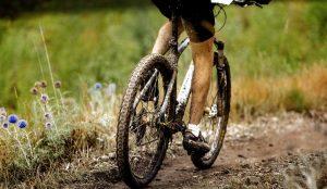 Tallahassee-Biking-Trails